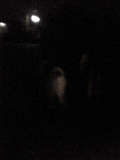 ルナとパパと夜の散歩!