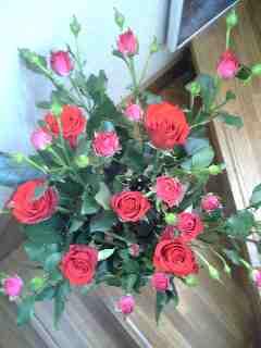 薔薇を頂いた!