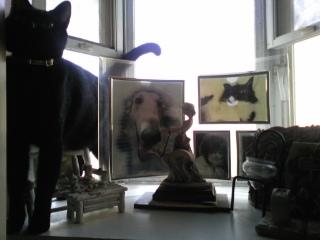 ハロウィンには、ヤッパリ黒猫!