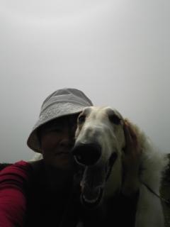 昨日は、ルナ、サリー、主人、私、皆でお散歩(^O^)