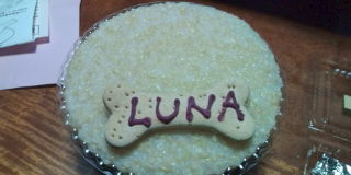 ルナ、8歳!