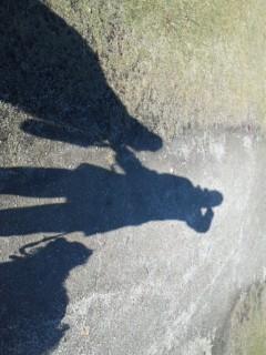 ルナとサリーとお散歩!