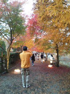 河口湖に紅葉を見に行って来ました。