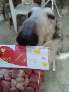 HAPPYバレンタイン!